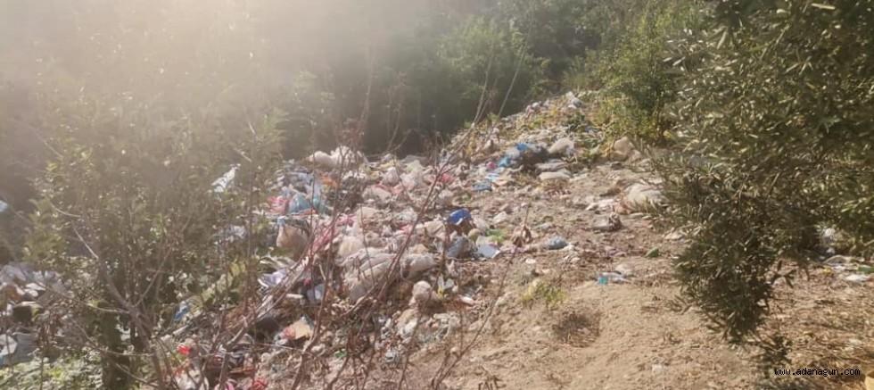Zeytin tarlalarının bulunduğu alana şehir çöplüğü dökülüyor